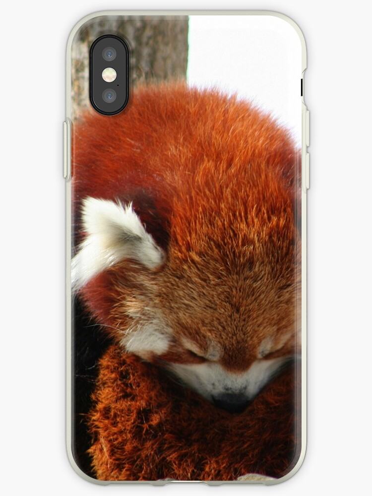 Red Panda by TReich03
