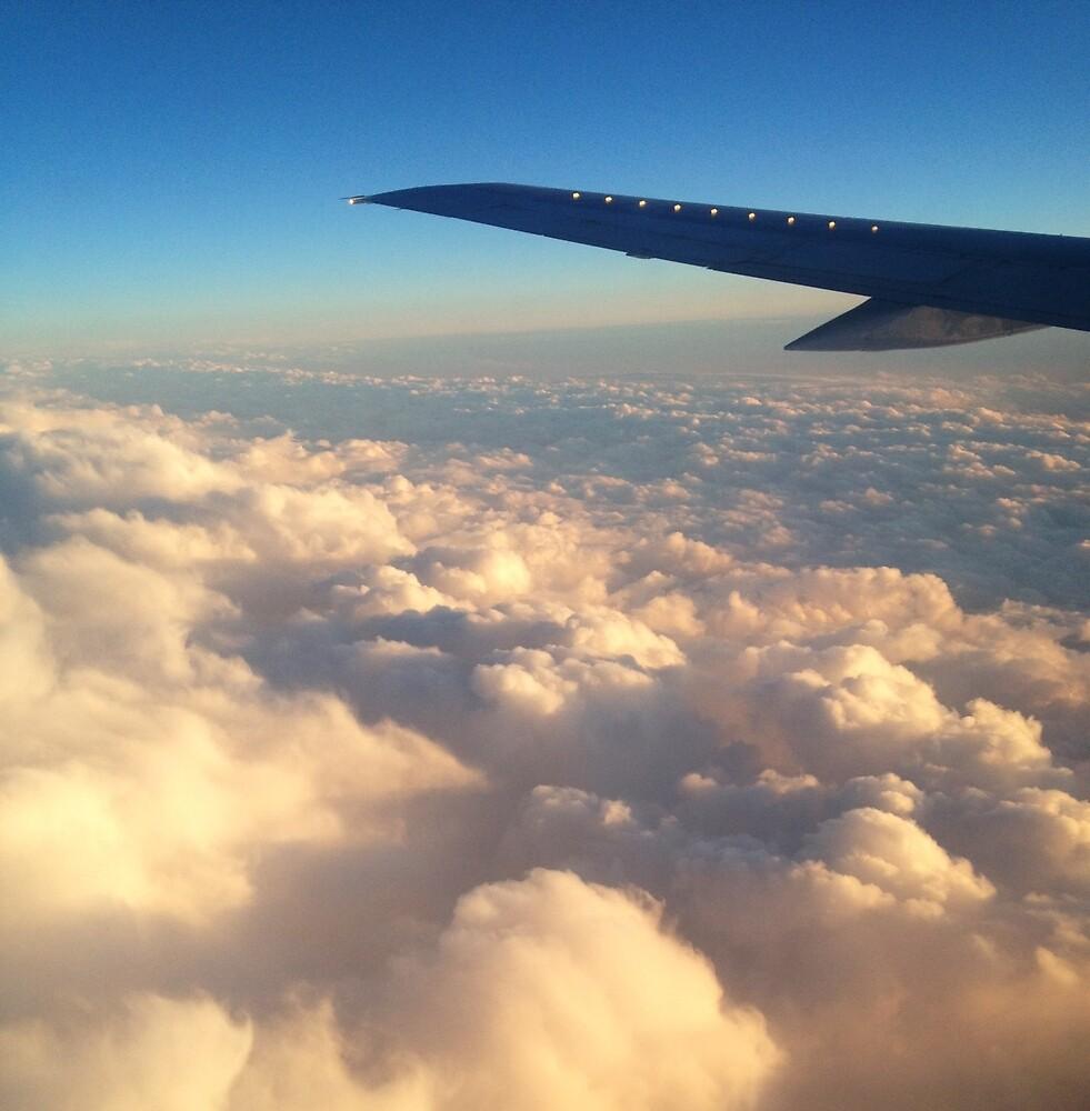 Full Flight by marianbee