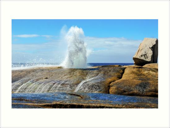 Thar She Blows - Bicheno, Tasmania by Lexa Harpell