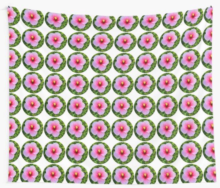 Pink Blooming Flower  by 104paul