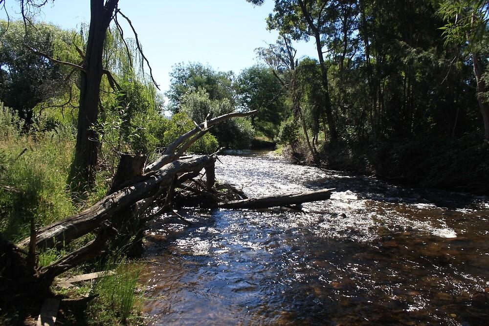 Rubicon River by RyansEye