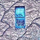 Blue Window by George Petrovsky