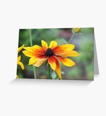 Sun - Flower Greeting Card