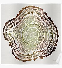 Tree Rings – Watercolor Poster