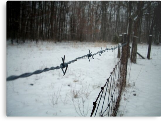 Cold Wire by Jayca