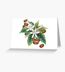 Watercolor coffee vignette Greeting Card