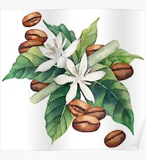 Watercolor coffee vignette Poster