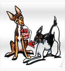 Rat Terrier Sweethearts Poster