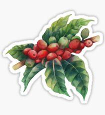 Aquarell Kaffeebohnen Sticker