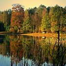 Autumn Colors by the Lake by ienemien