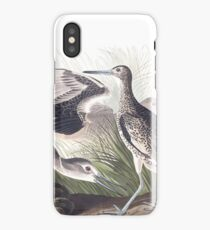 Willet - John James Audubon iPhone Case