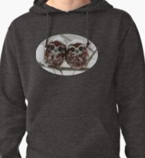 Two happy little owls Pullover Hoodie