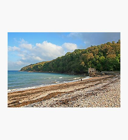Elberry Cove Photographic Print