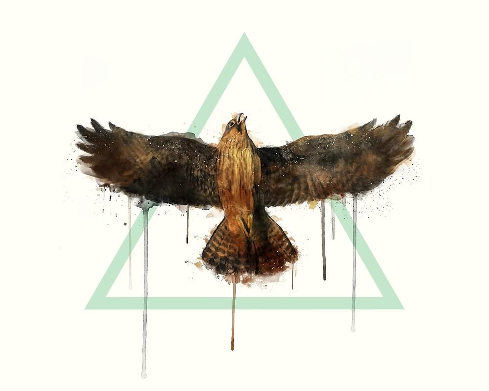 Falcon by Amy Hamilton