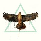 Falke von Amy Hamilton