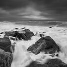 Storm by willgudgeon
