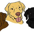 The Three Labradors by rmcbuckeye