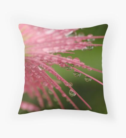Reflections in Raindrops Throw Pillow