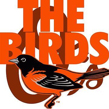 Birds by Alexaja