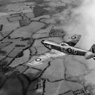 Spitfire XVI TD240 SZ-G black and white version by Gary Eason
