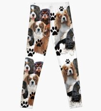 Cavalier Spaniel Family Group Leggings