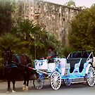 Carriage at The  Alamo by Charmiene Maxwell-Batten