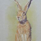Hare by FranEvans