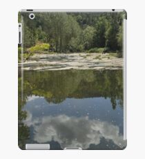 lanscape  iPad Case/Skin