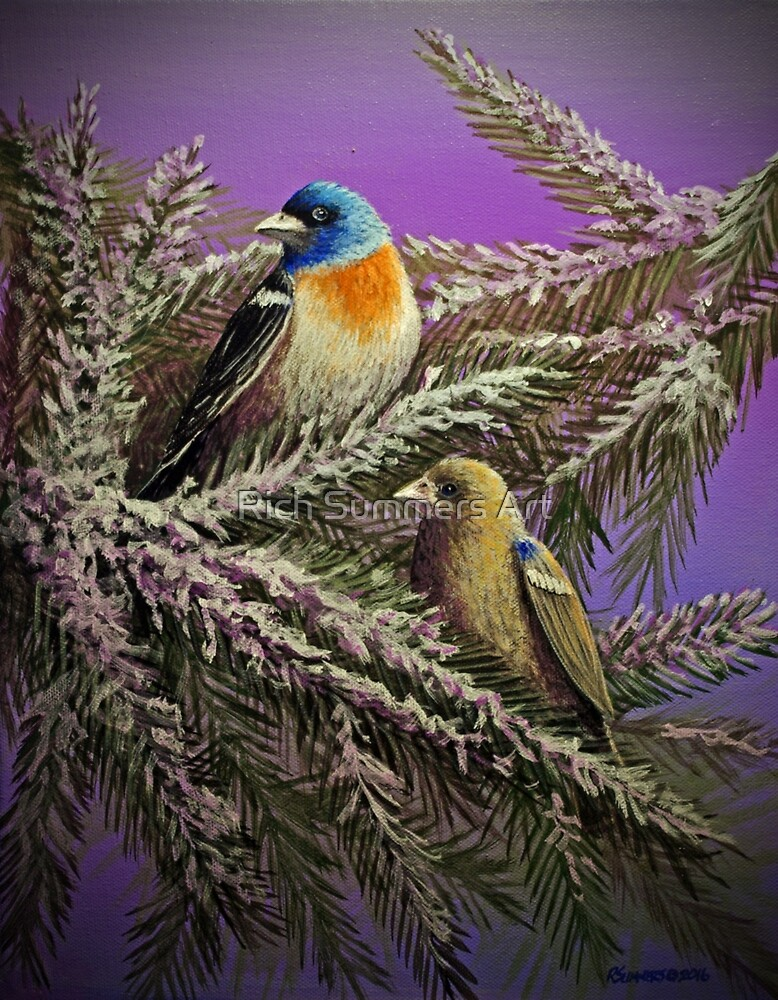 Winter Buntings by Rich Summers