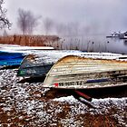Awaiting Summer - Presque Isle State Park - Erie, PA by Kathy Weaver