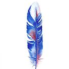 Cobalt Watercolor Feather by Willow Heath
