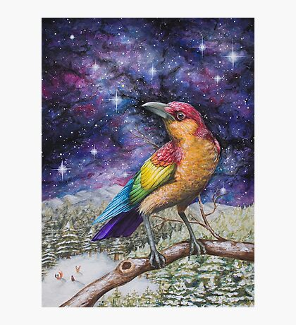 Rainbow Crow Photographic Print