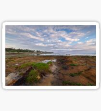 Low Tide at Rickett's Point, Beaumaris Sticker