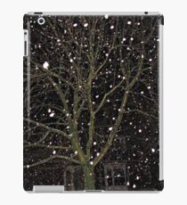 Falling Snow - Night Scene iPad Case/Skin