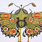 Moth by federico cortese