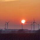 Sunset in Illinois by Maryna Gumenyuk