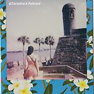 Polaroid Picture - Beautiful St. Augustine by Zack Attack