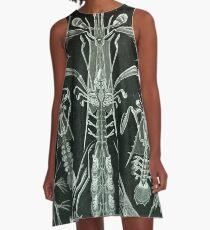 Thoracostraca - Ernst Haeckel A-Line Dress