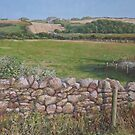 Devon field and drystone wall by martyee