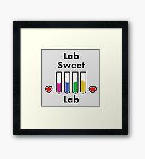 Lab sweet lab Framed Print