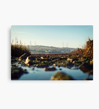 scenic river view of Bentlass Canvas Print