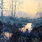 Sunset on Skipwith Common by Glenn Marshall