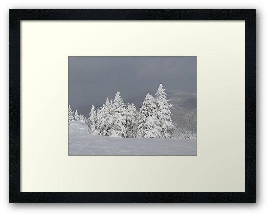Beautiful mountaintop snowscape by hummingbirds