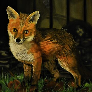 Urban Fox by CLAIREOS