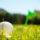 Golf ball in the rough by Arve Bettum
