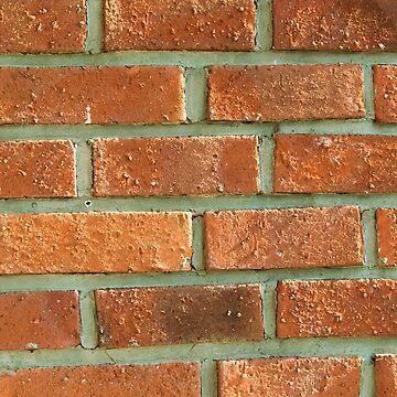 Red terracotta bricks by ArveBettum