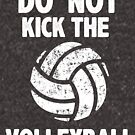 Don't Kick the Volleyball Sports Graphic Tee Funny Sarcastic Shirt team by DesIndie