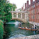St. John's College, Cambridge, the Bridge of Sighs by Priscilla Turner