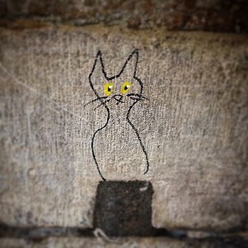 Paris Cat as Streetart by PaulCoore