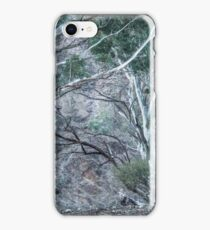 Red Gums in the Creek iPhone Case/Skin
